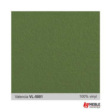 Valencia-VL5001