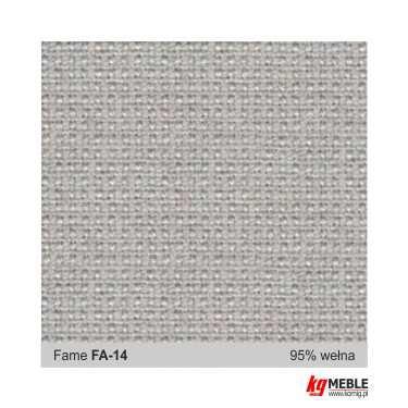 Fame-FA14