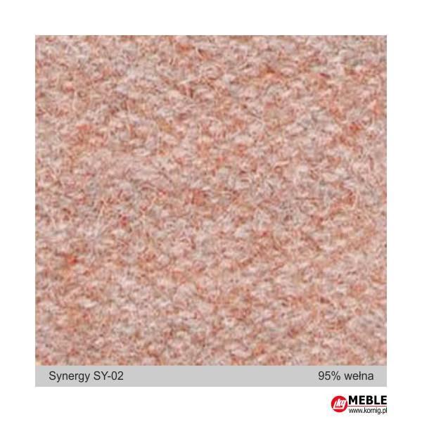 Synegry-SY02