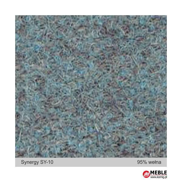 Synegry-SY10