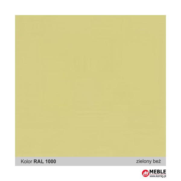 Beżowo-zielony RAL 1000