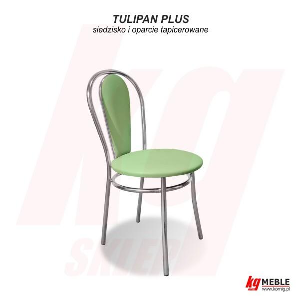 Tulipan Plus