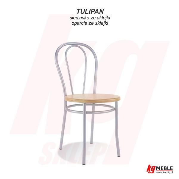 Tulipan wood