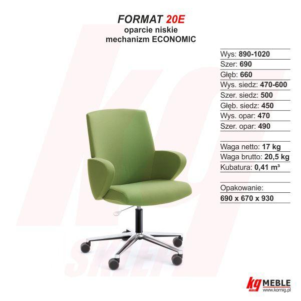 Format 20E