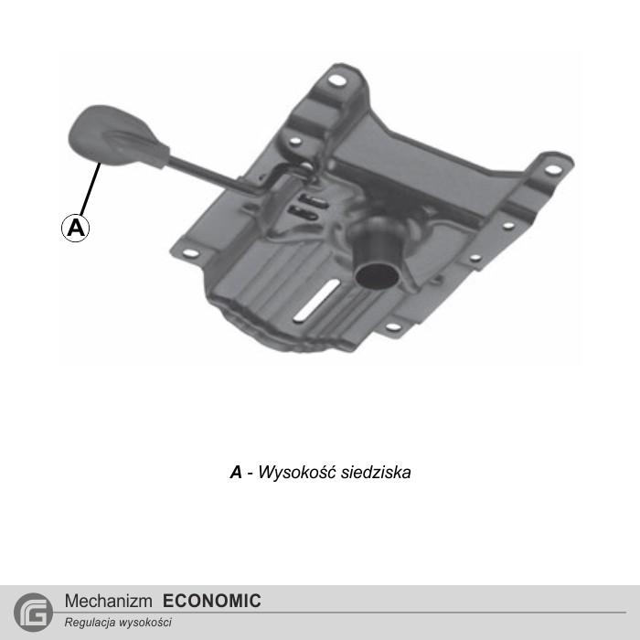 E - Mechanizm Economic