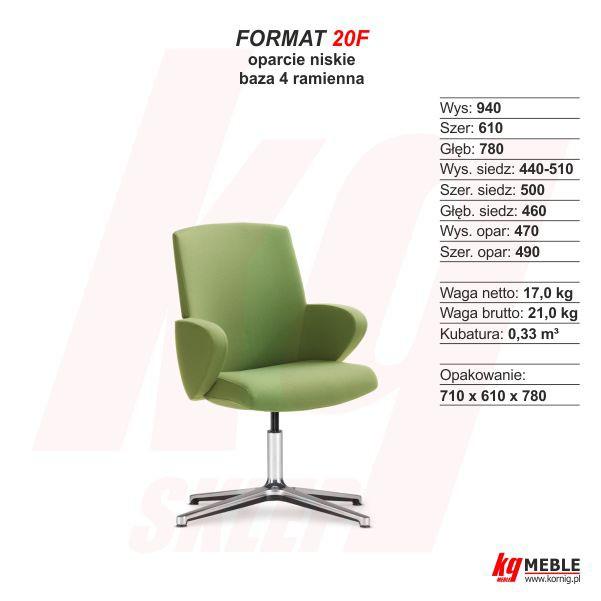 Format 20F