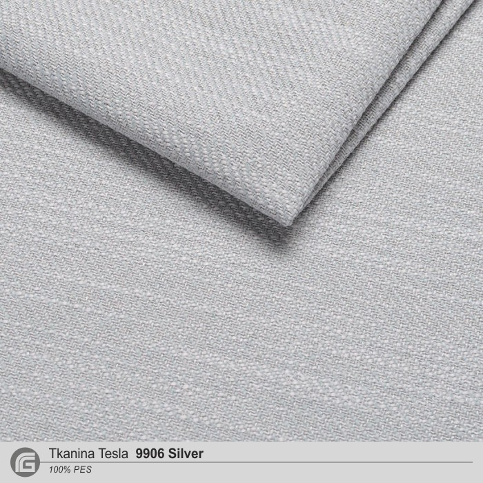 TESLA-9906 Silver