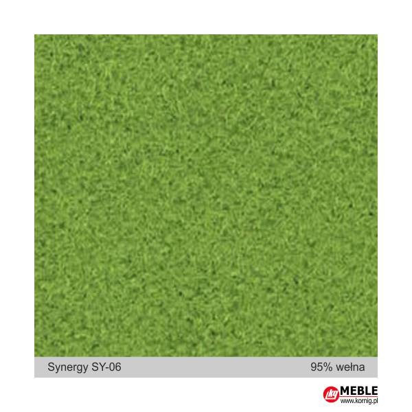 Synegry-SY06